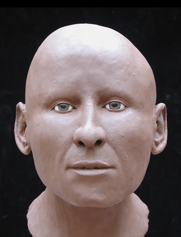 a photo of a reconstructed head of an Anglo Saxon woman - without her hair