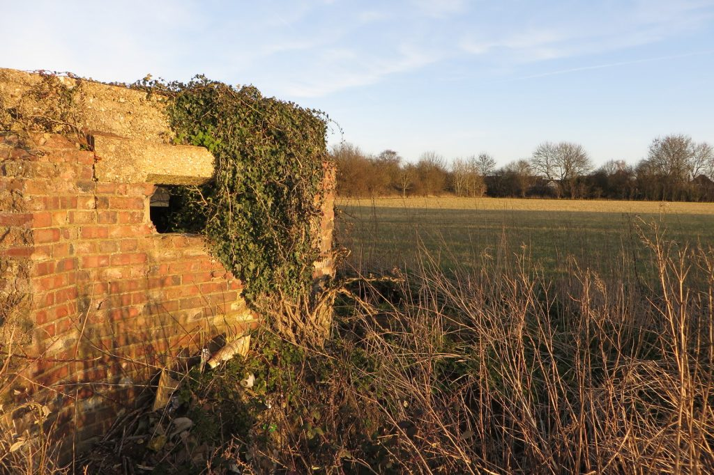 A photo mof a overgrown pillbox next to a field
