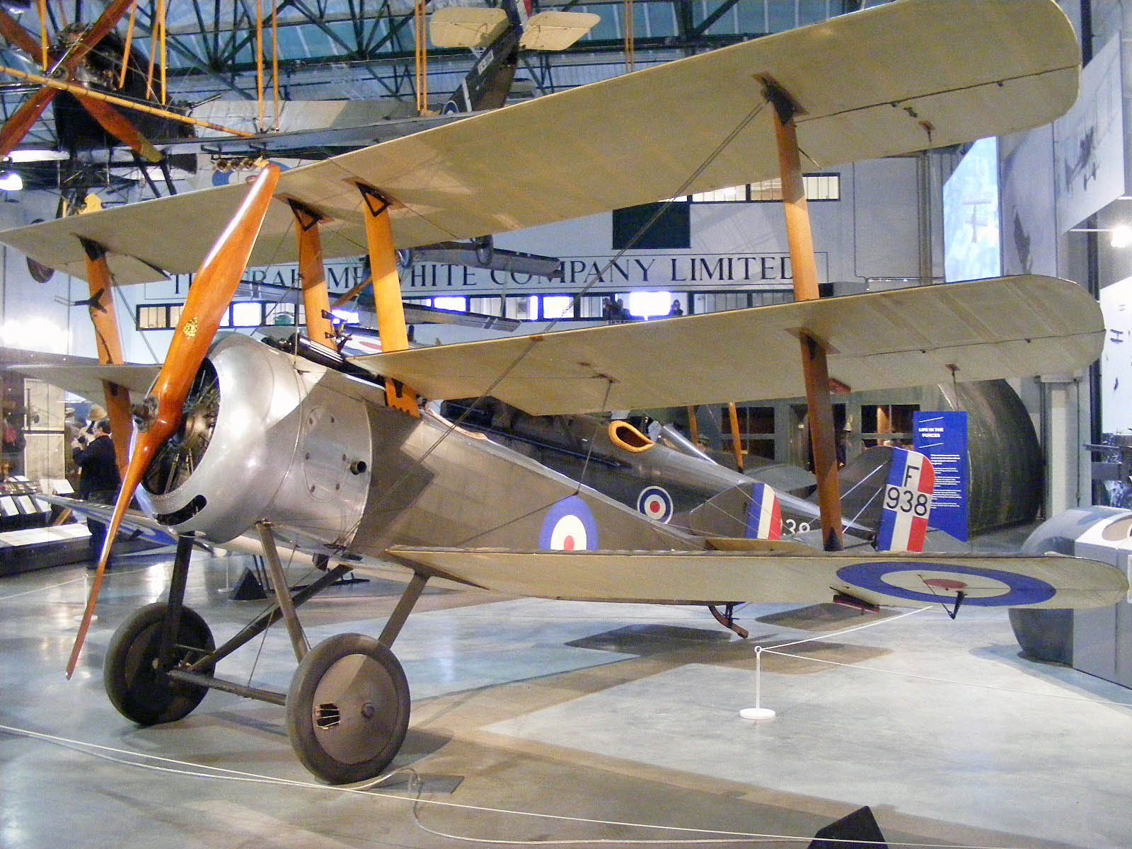 a photo of a triplane in a gallery