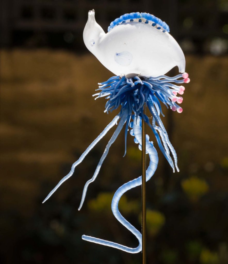 a glass model of a jellyfish