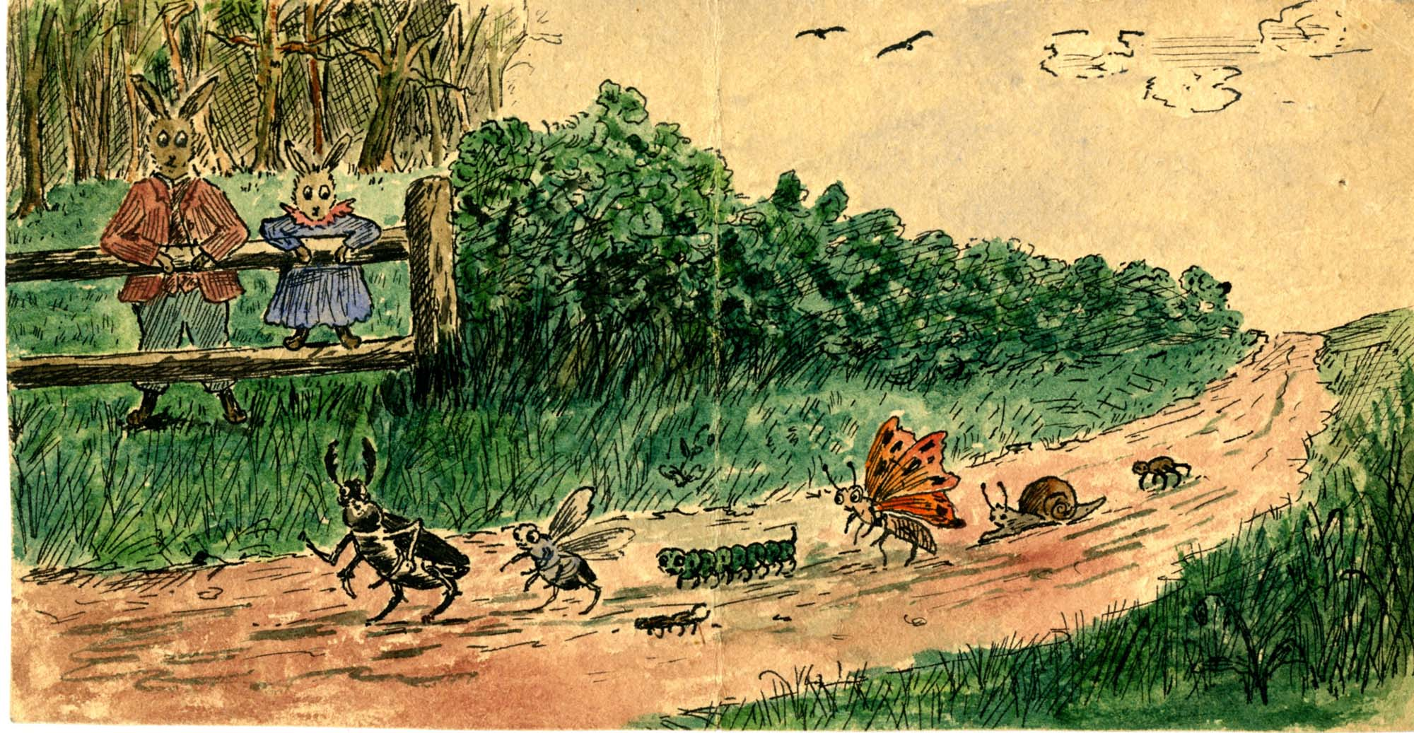 a drawing of two rabbits dressed in clothes watching a parade of insects walk down a country lane