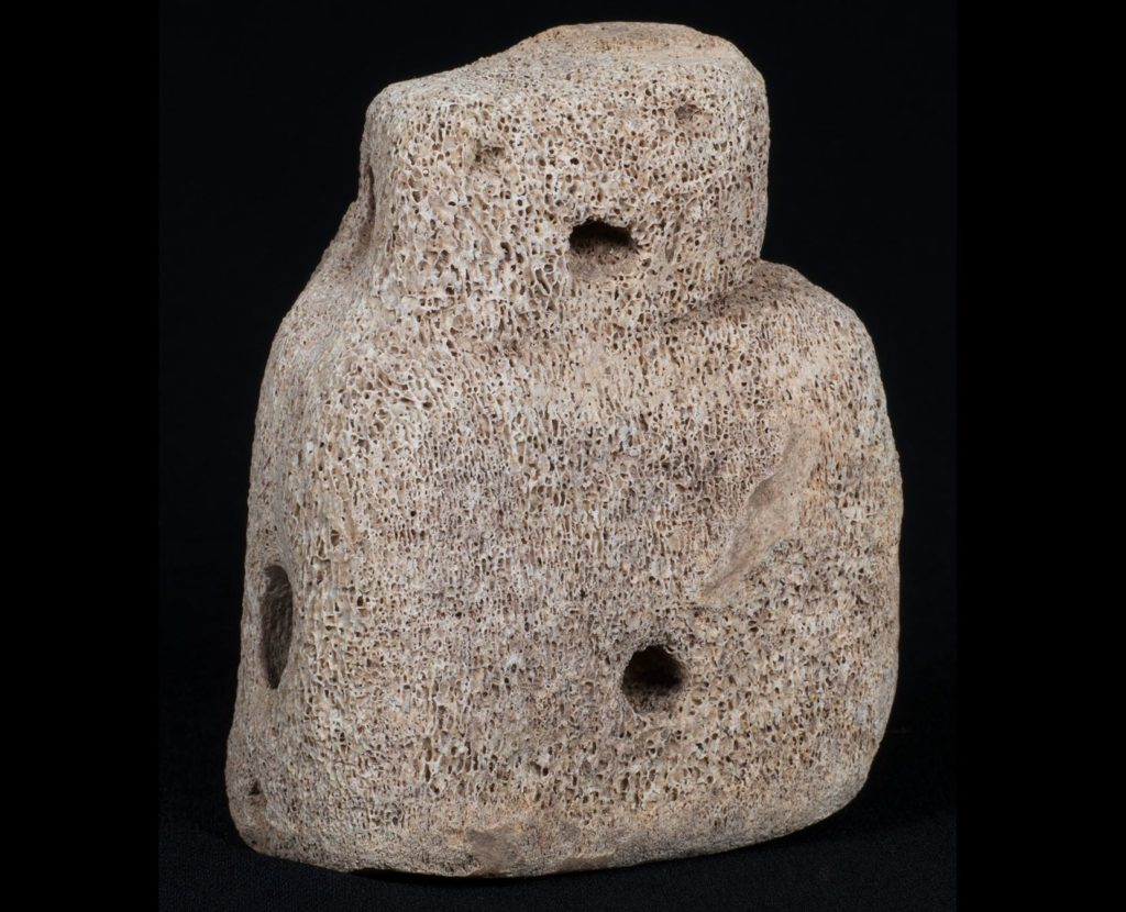 a photo of a crudely carved bone figurine