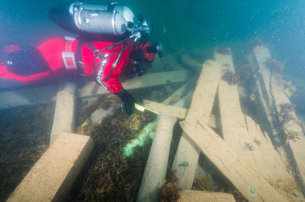 a photo of a diver searching a wreck of timbers and cannon