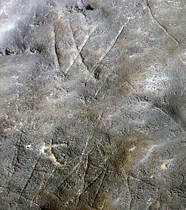 A photo of a W and other markings scratched into a smooth rock surface