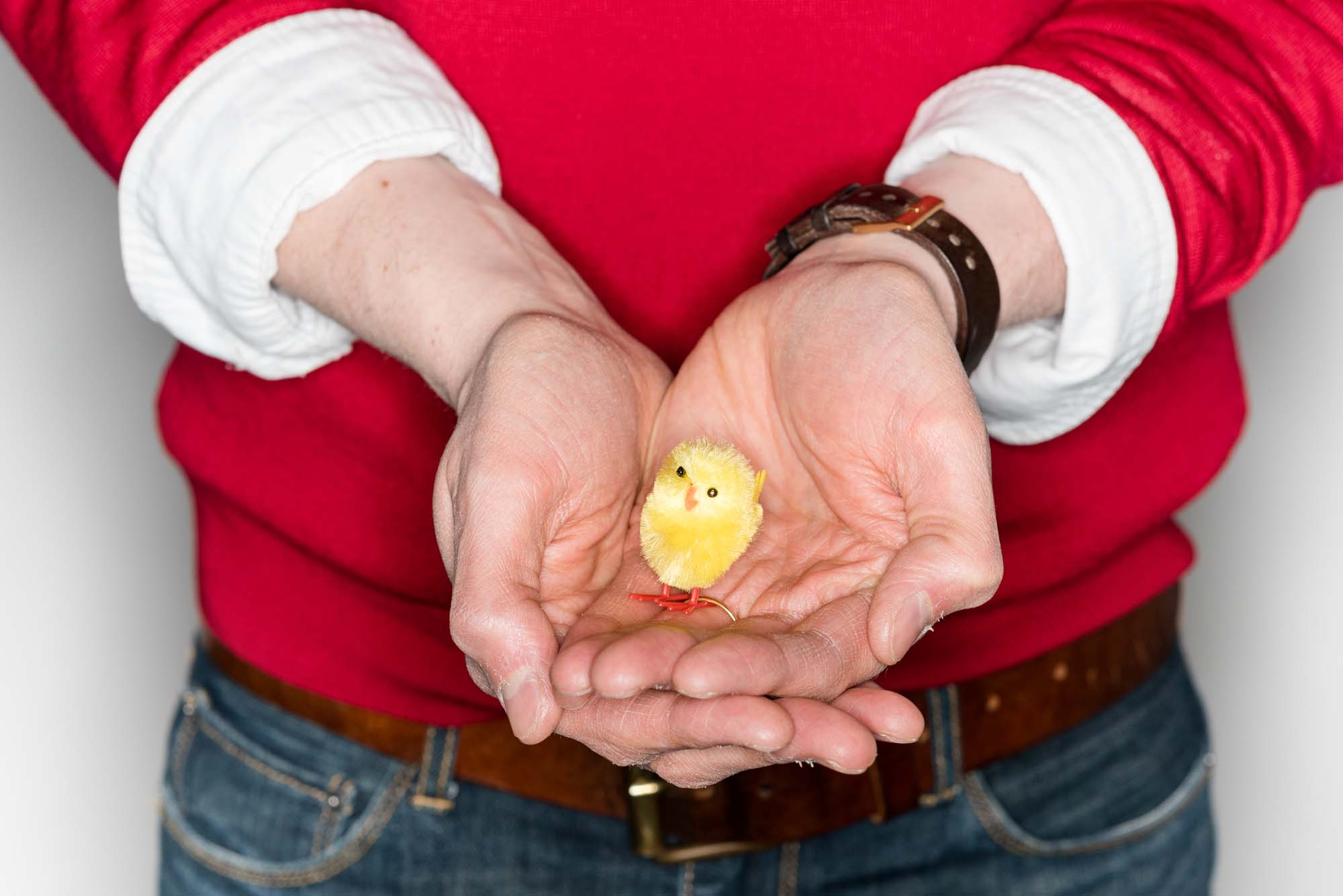 a croped picture of two hands holding a toy yellow chick