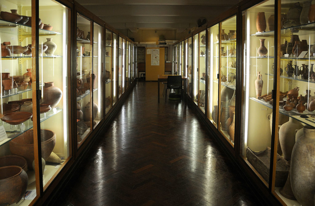 photograph of interior of egyptology gallery, showing display cases to either side
