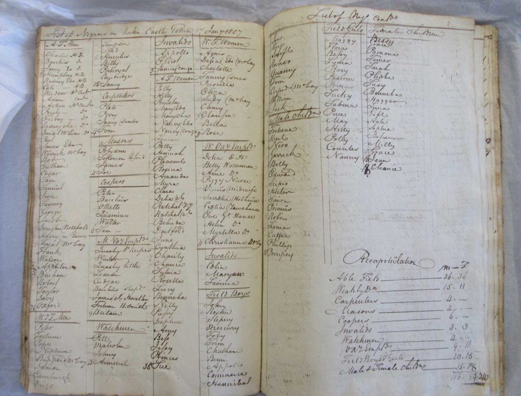 a photo of a [page of ledger book with the names of negro slaves and their roles and occupations