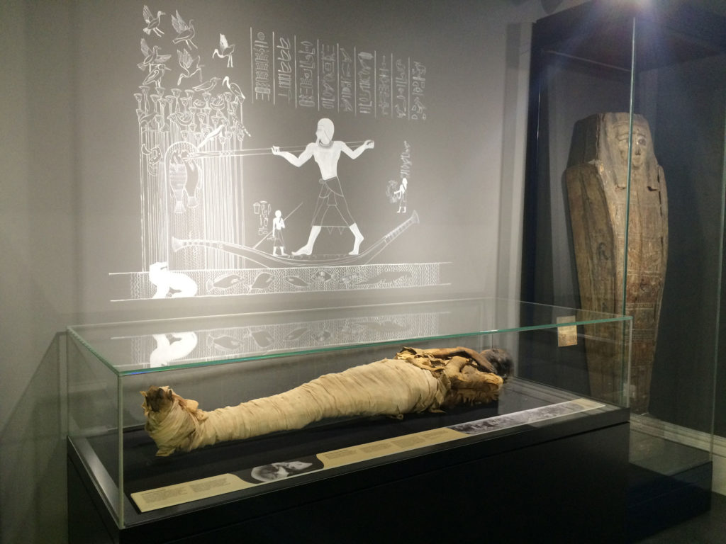 photograph of mummy in a display case, with heiroglyphics on the wall behind