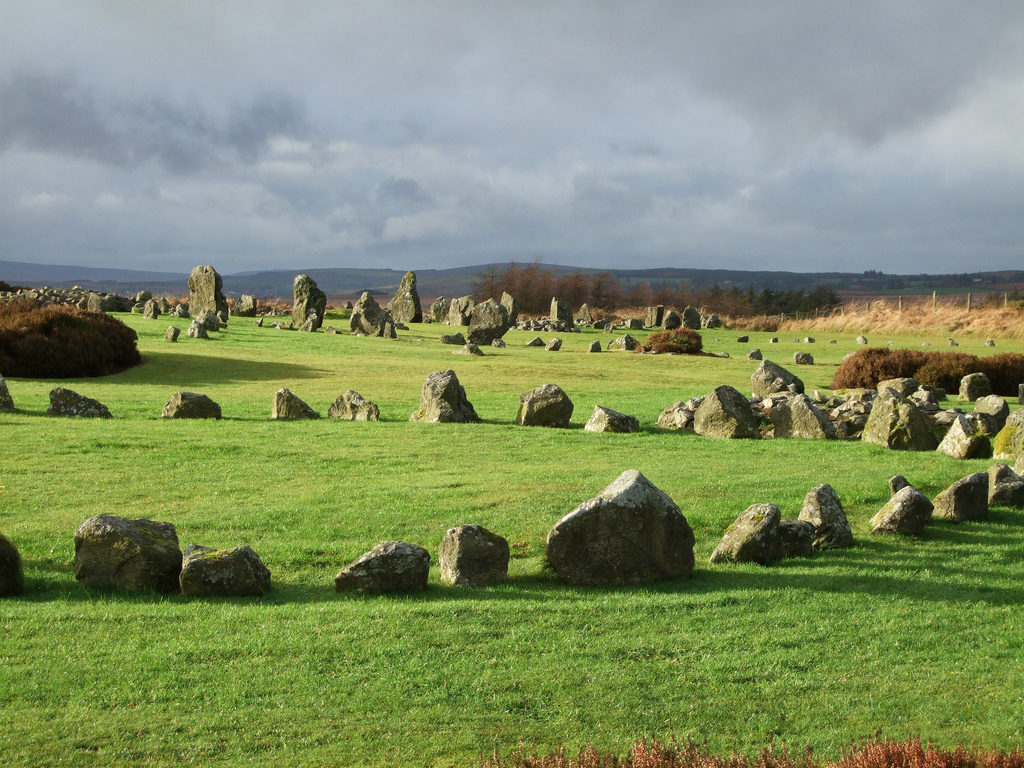 photograph of a large number of standing stones arranged in circles in a grassy field