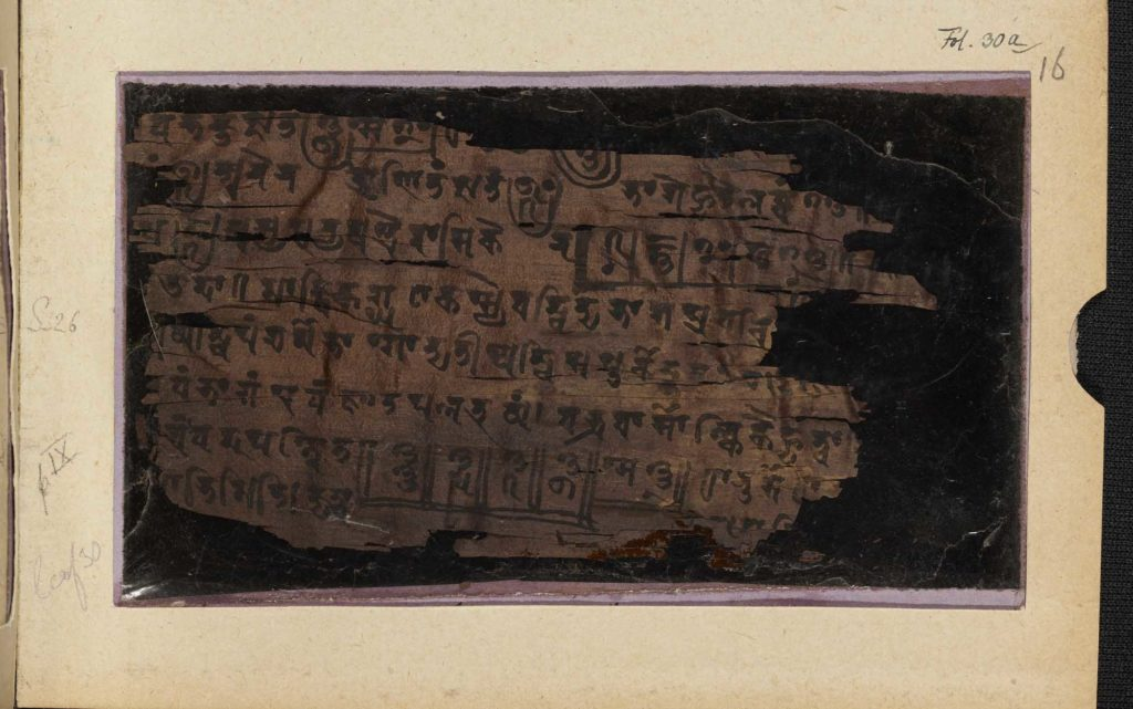 a close up of a manuscript fragment with ancient Indian writing on it