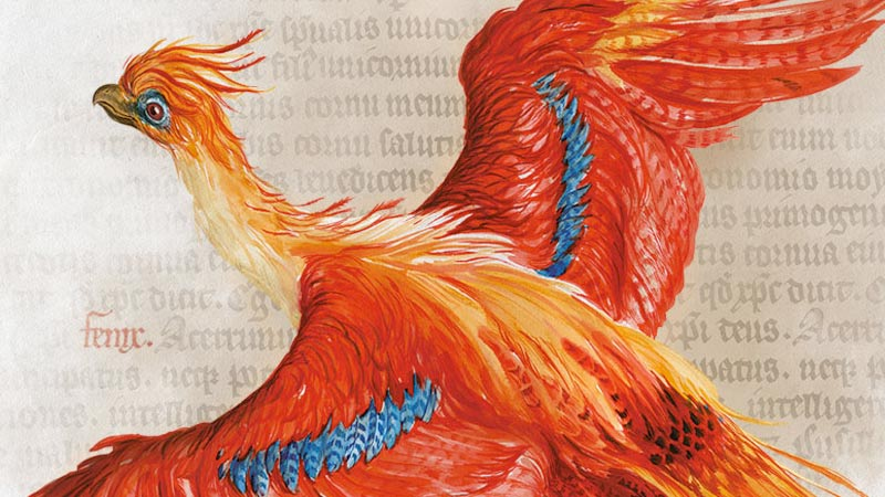 illustration of phoenix on paper containing old script
