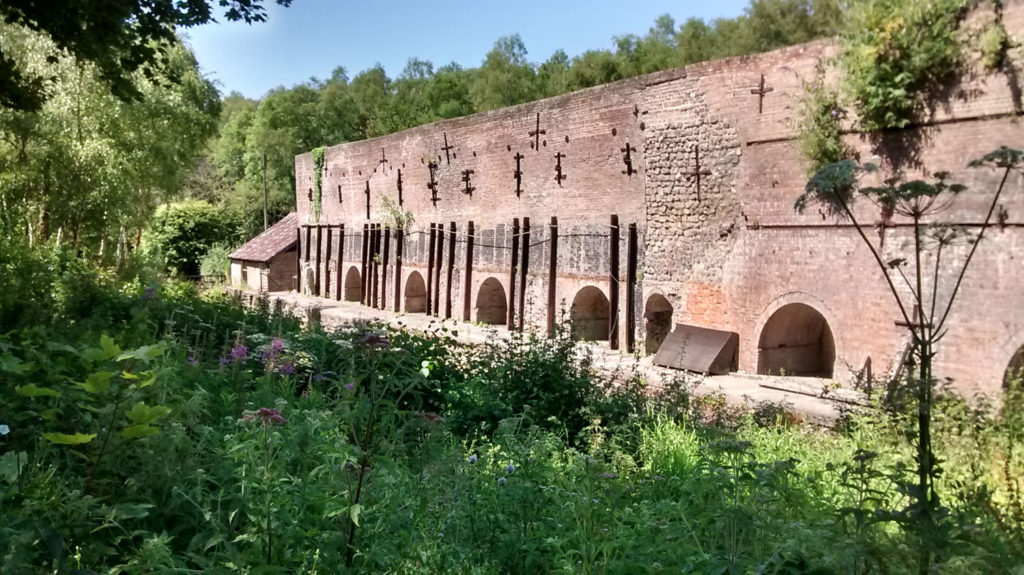 photograph of disused lime kilns surrounded by overgrown vegetation