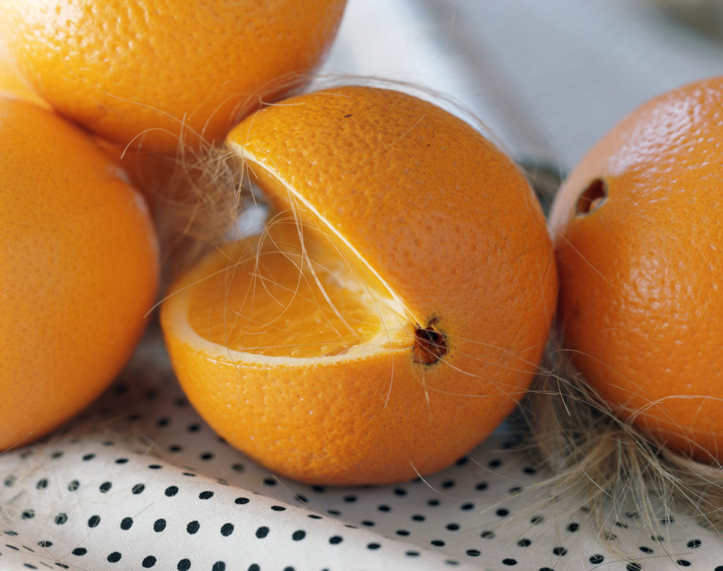 photograph of oranges covered in blonde hair on white polkadot fabric