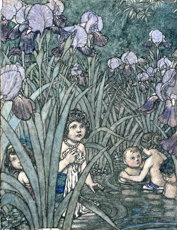 Classic picture of babies and young children in a purple, lilac and green reed bed and water
