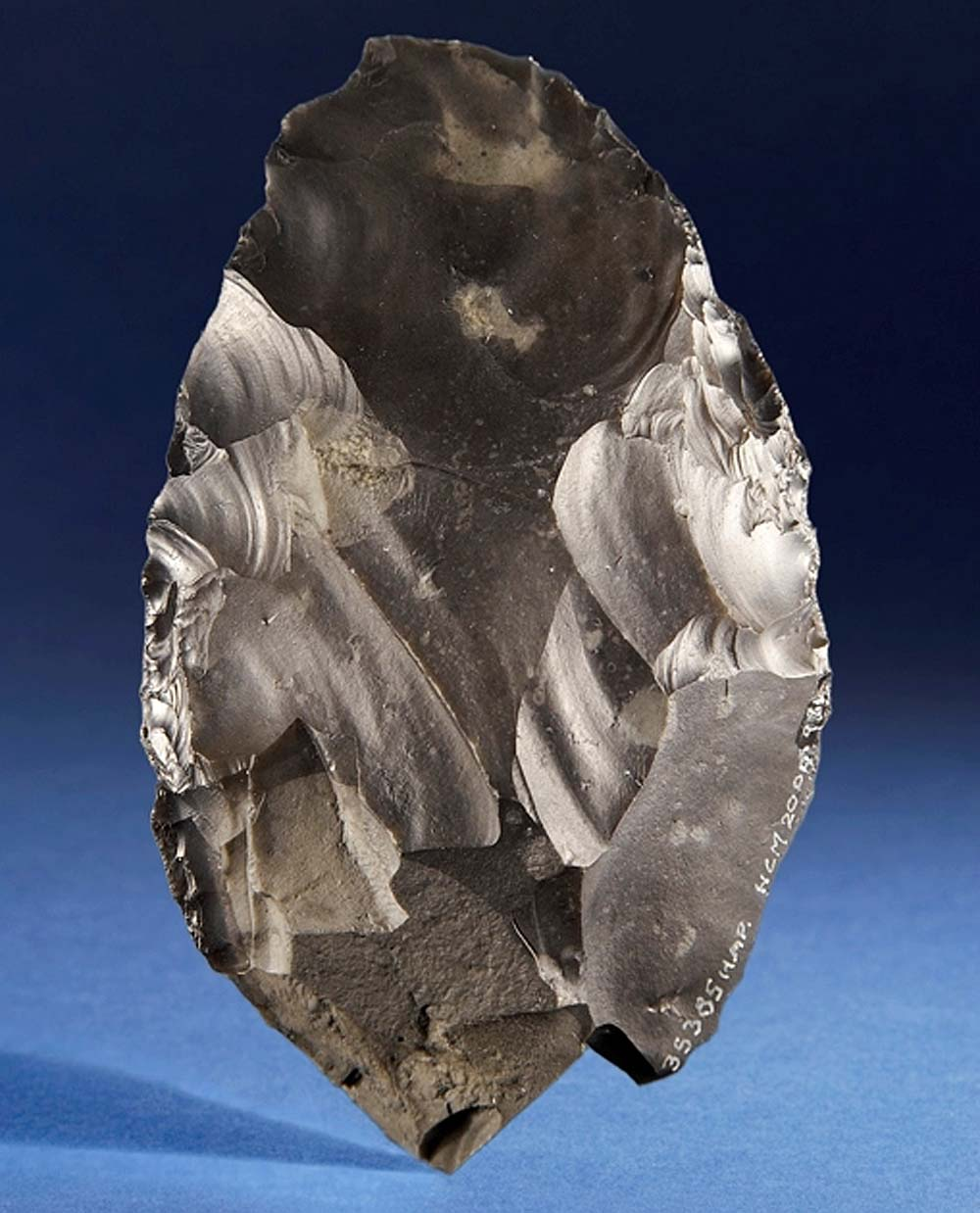 A photo of a beautifully carved flint handaxe