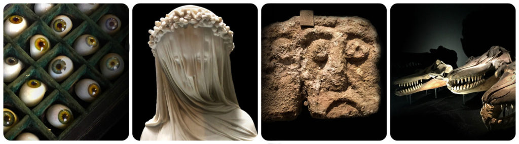 composite image of four museum objects - glass eyes, veiled lady ceramic, masonry face and whale skulls