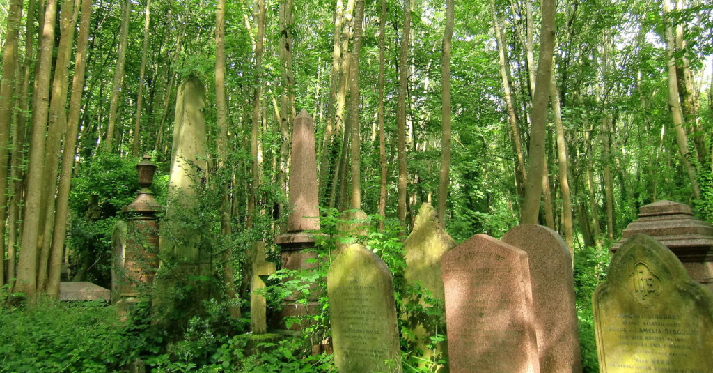 photograph of headstones and monuments in dense greenery
