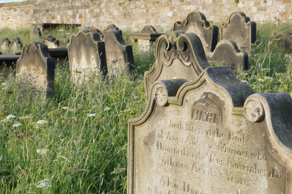 close up photograph of headstones with decorative scrolls in long grass