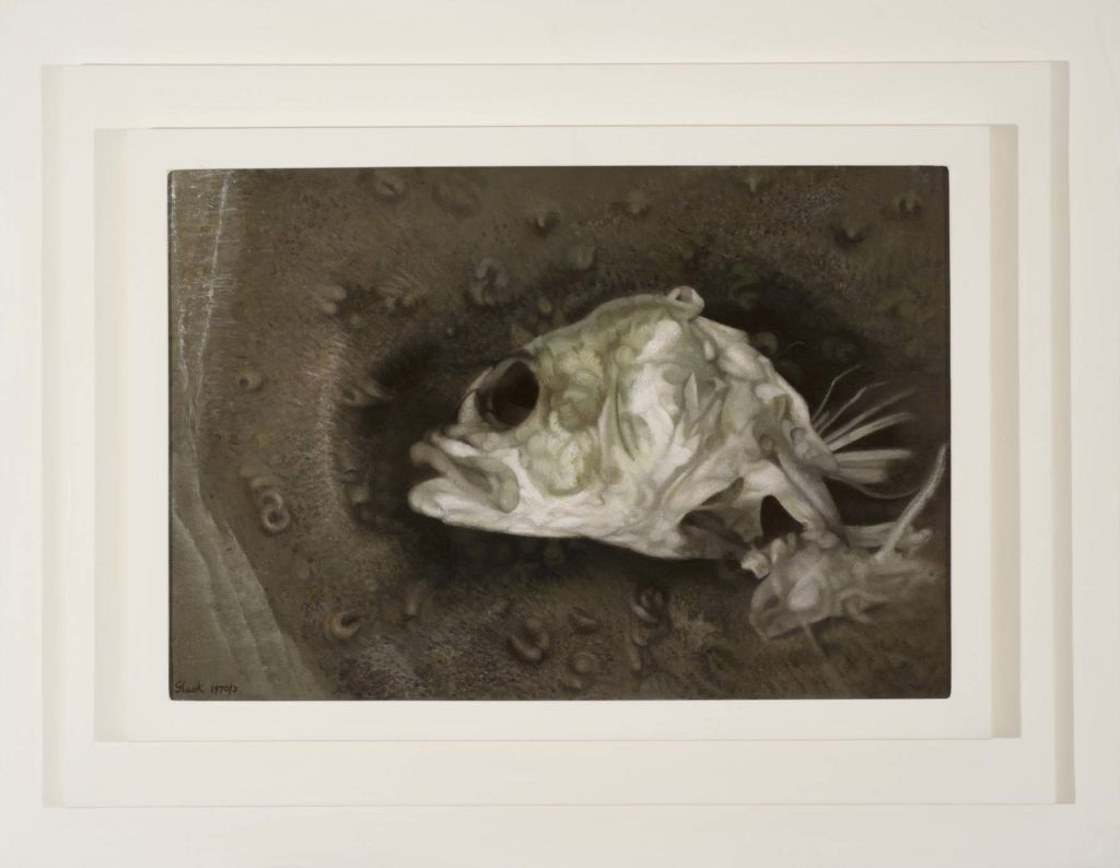a painting of a partly decomposed fish