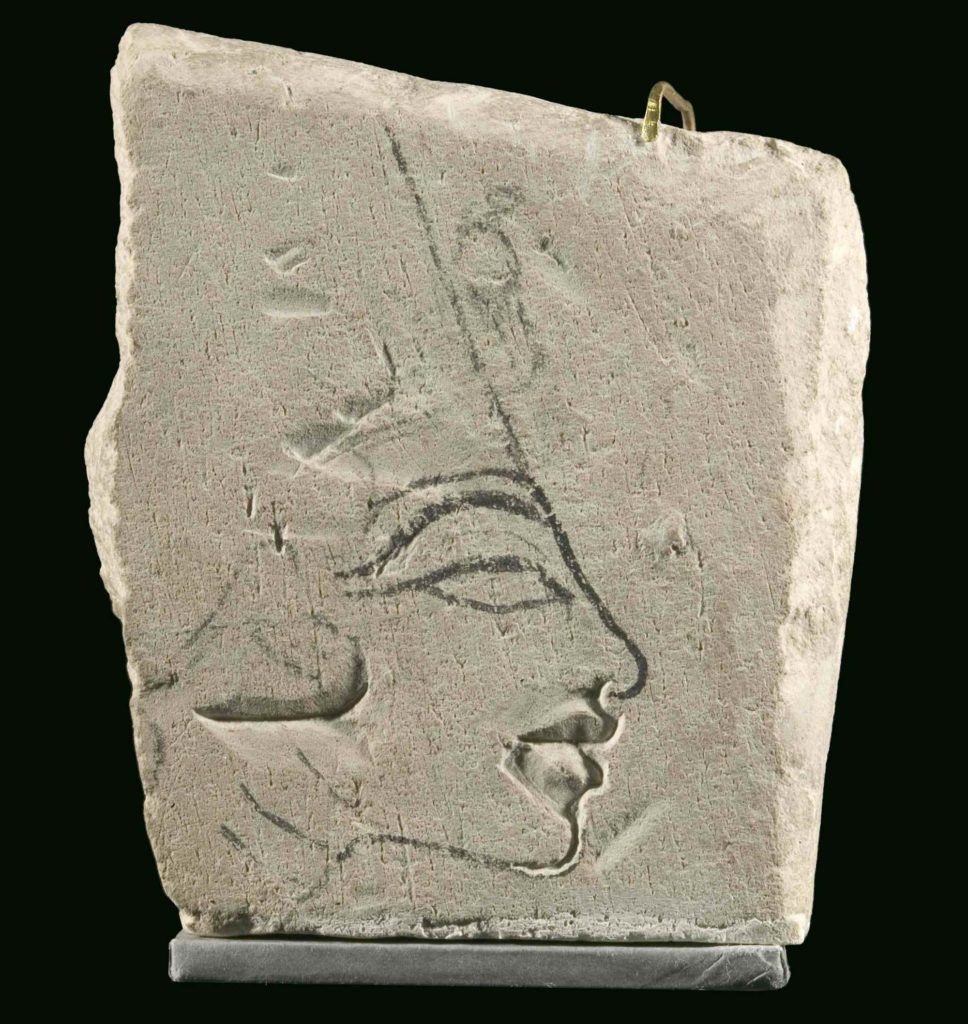 a photo of a limestone fragment with face of Nefertiti