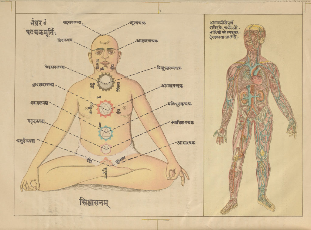 two drawings of the human body - one image showing a man in lotus position with the chakras marked on his body, one showing a standing figure with veins and organs showing