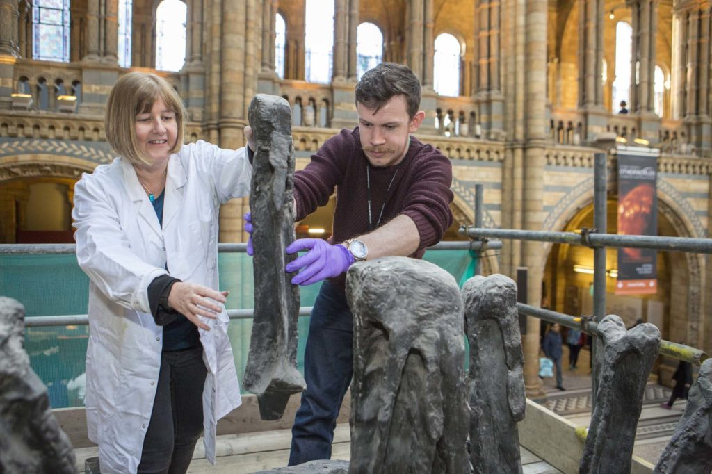 a photo of two people on a scaffold examining a large dinosaur bone