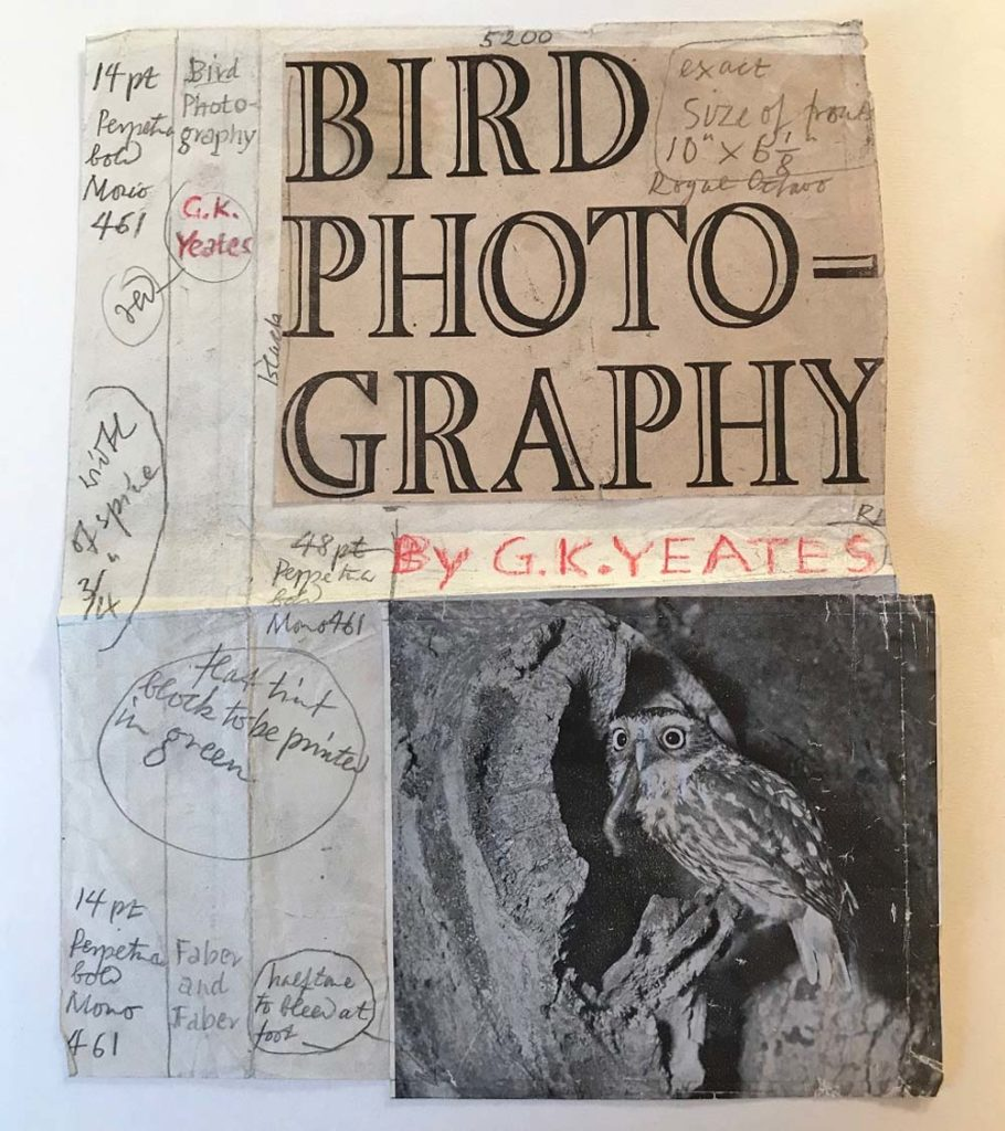 a mock up of a book cover on bird photography with a photo of a bird