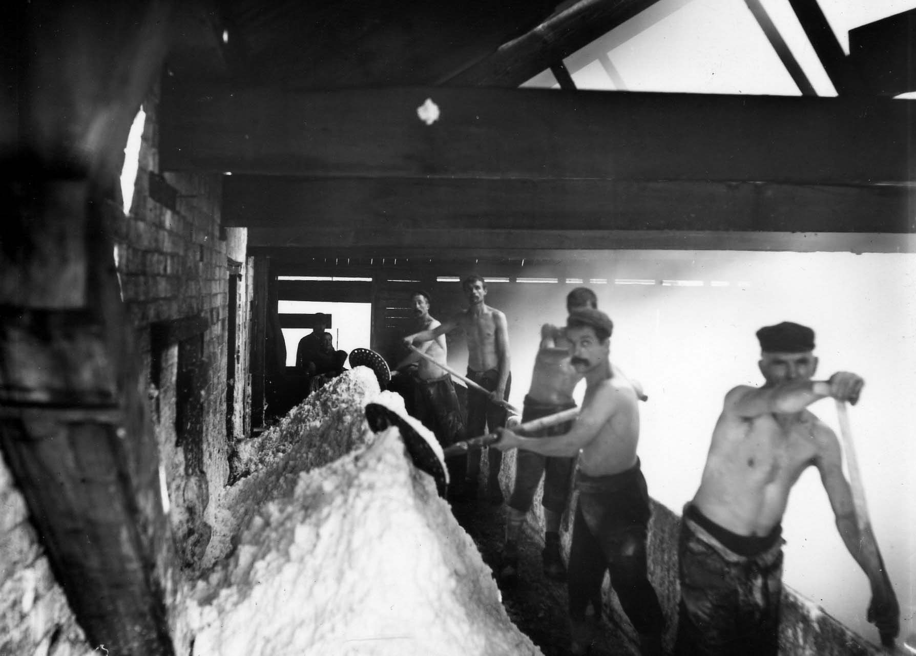 a black and white photo of men with shovels shovelling slt from a steaming pan