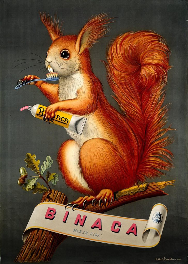 a poster with an mage of a squirrel cleaning its teeth