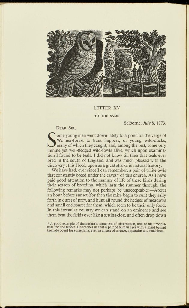 a photo of a page from a book with an illustration of a barn owl at the top