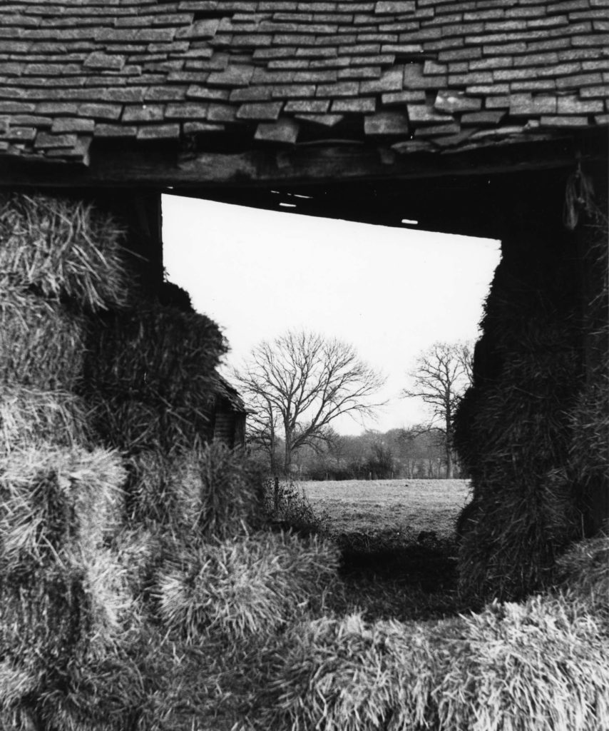 a black and white photo of a view through a barn with a tile roof with trees see through the aperture