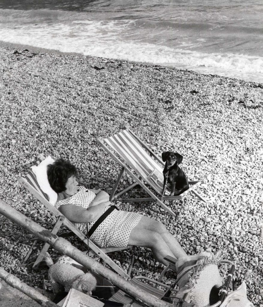 a photo of a woman on a deckchair on a pebbly beach with a dog sitting on a deckchair next to her