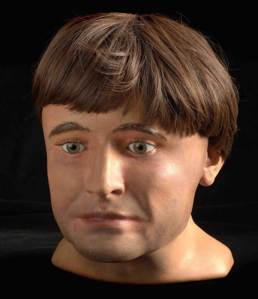 a photo of a reconstruction of the face and head of a man with brown hair and brown eyes
