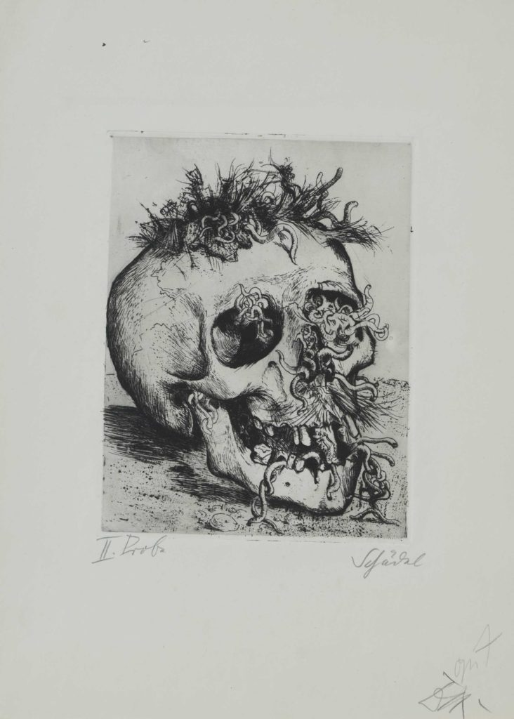 a drawing of a skull with worms protruding from it