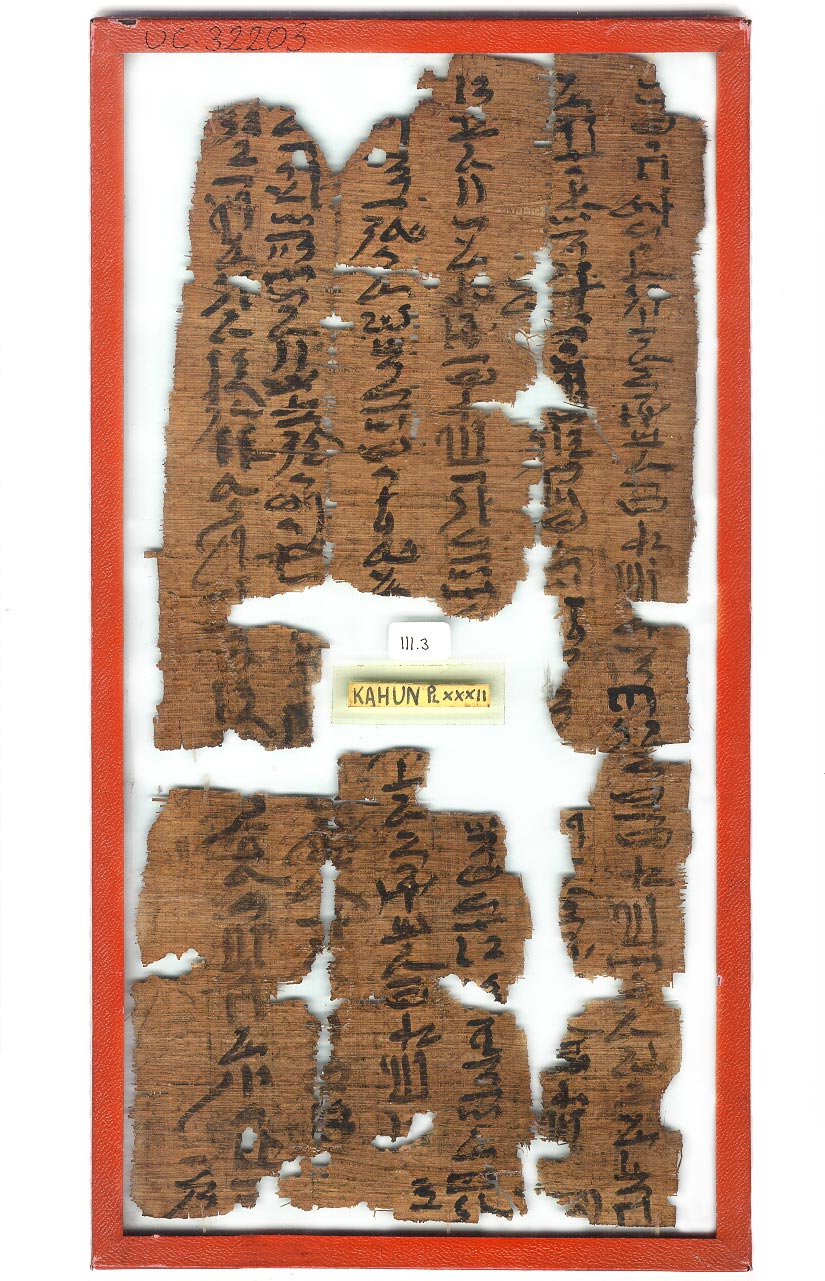 a photo of fragments of papyrus with heiroglyphs
