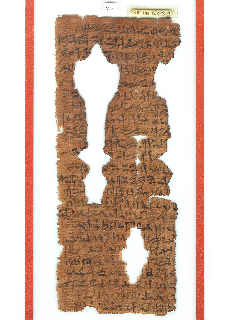 a photo of a fragile papyrus in a case with a red frame