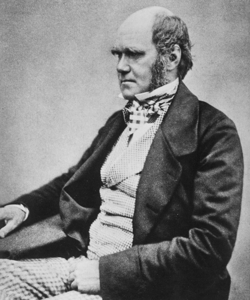 a photo of a bald man with sideburns, Victorian frock coat and sideburns