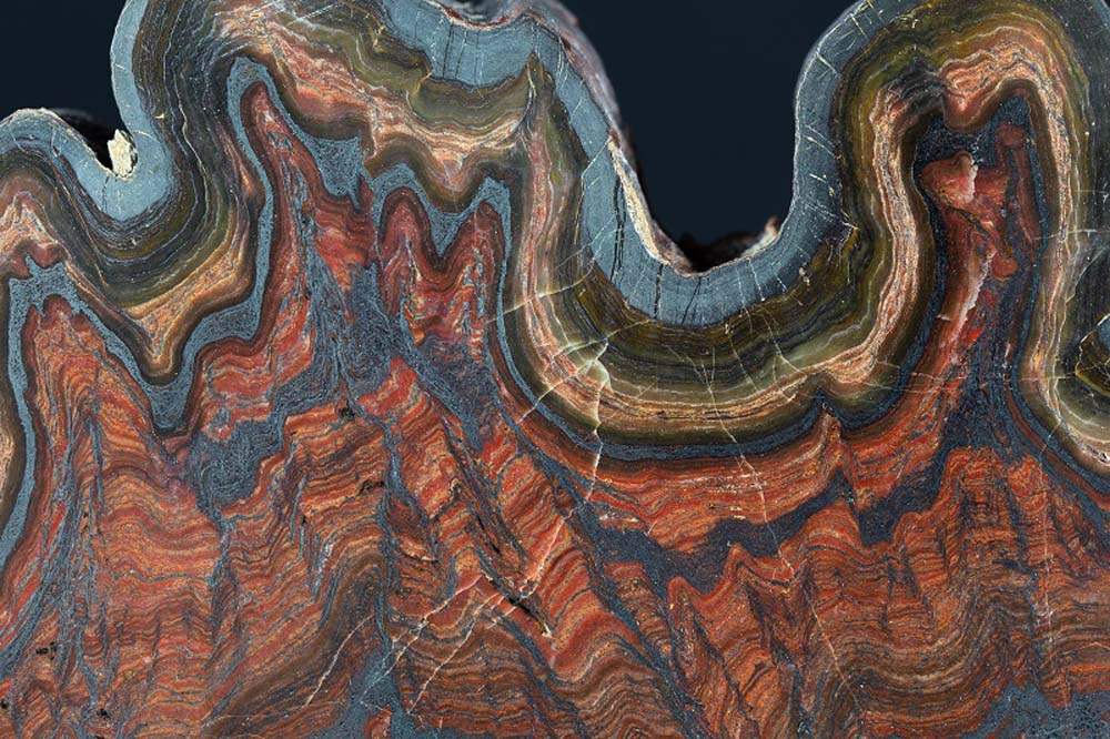 a layered piece of rock showing different strata