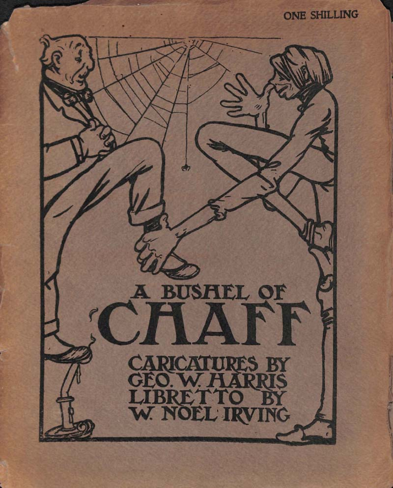a fron book cover with two psindly figures next to a spider web