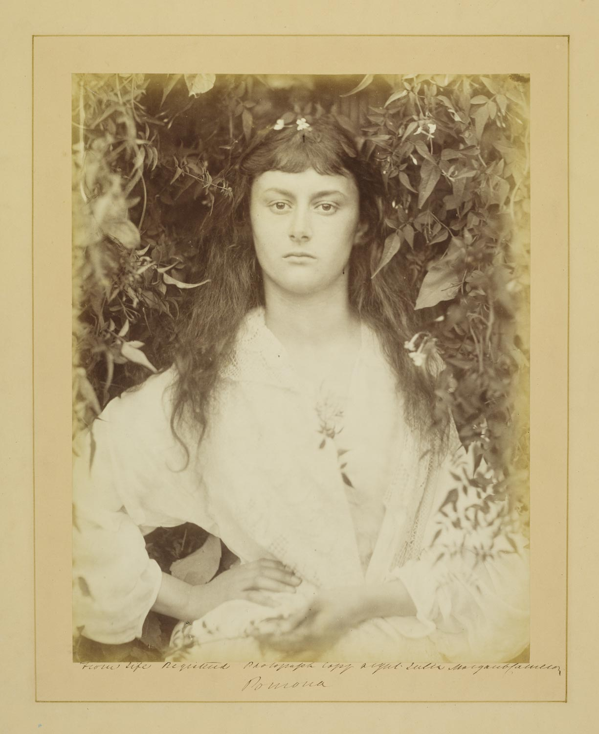 sepia toned image of young woman in white dress surrounded by foliage