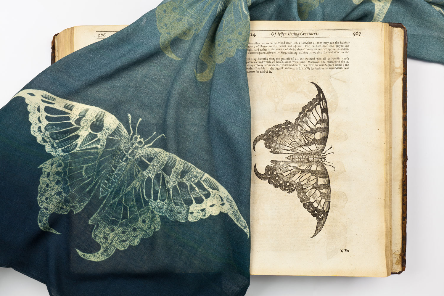 photograph of dark blue scarf with gold butterfly design with book showing same illustration
