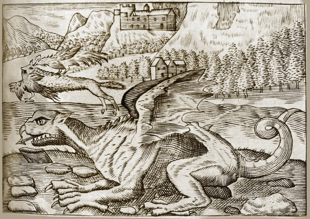 a drawing of a dragon with a castle in the background