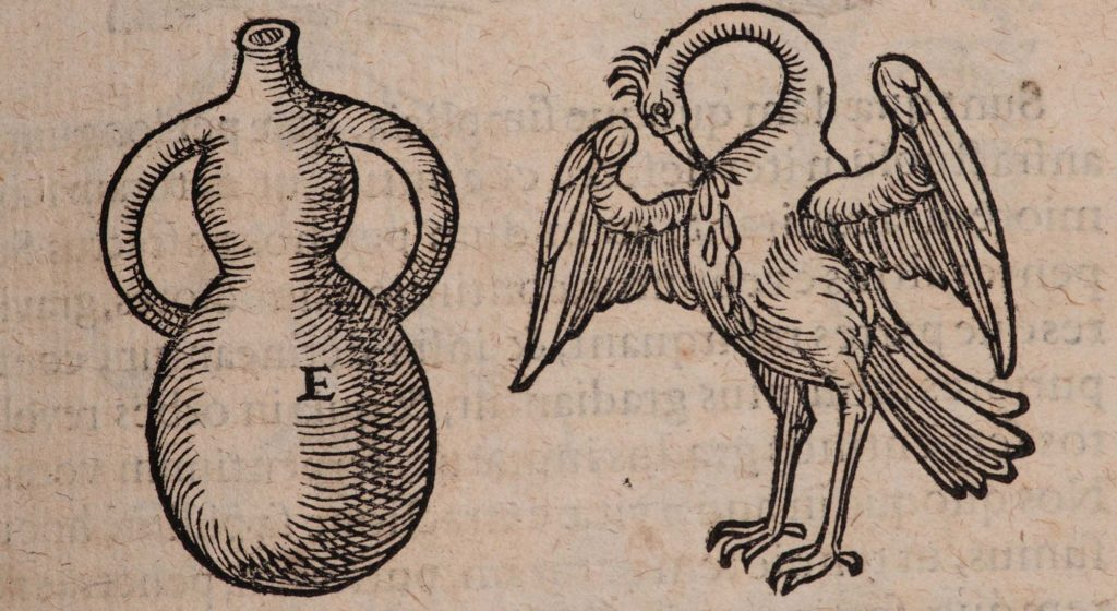 an illustration of a goose like creature and a jar