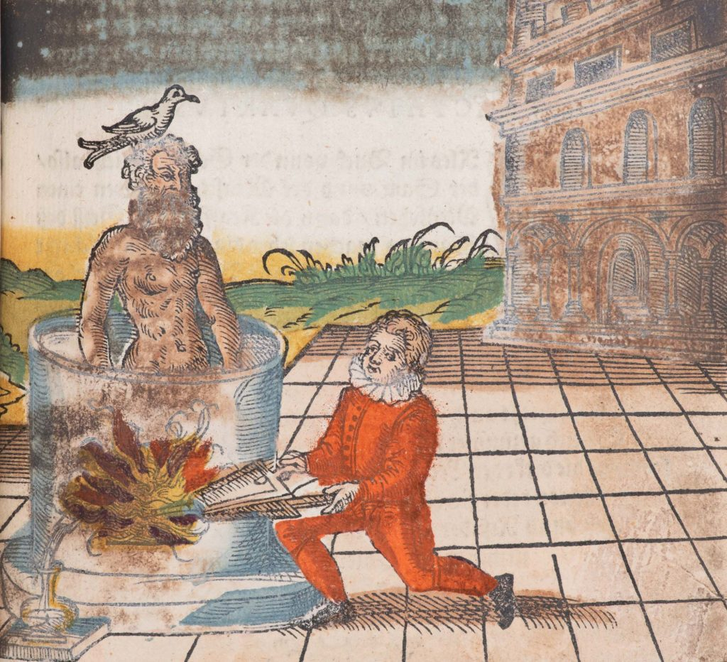 an illustration from a manuscript showing a bearded person with a seagul perhced on his head being boiled in a cauldron