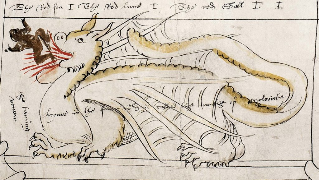 a drawing of a dragon creature on a medieval manuscript