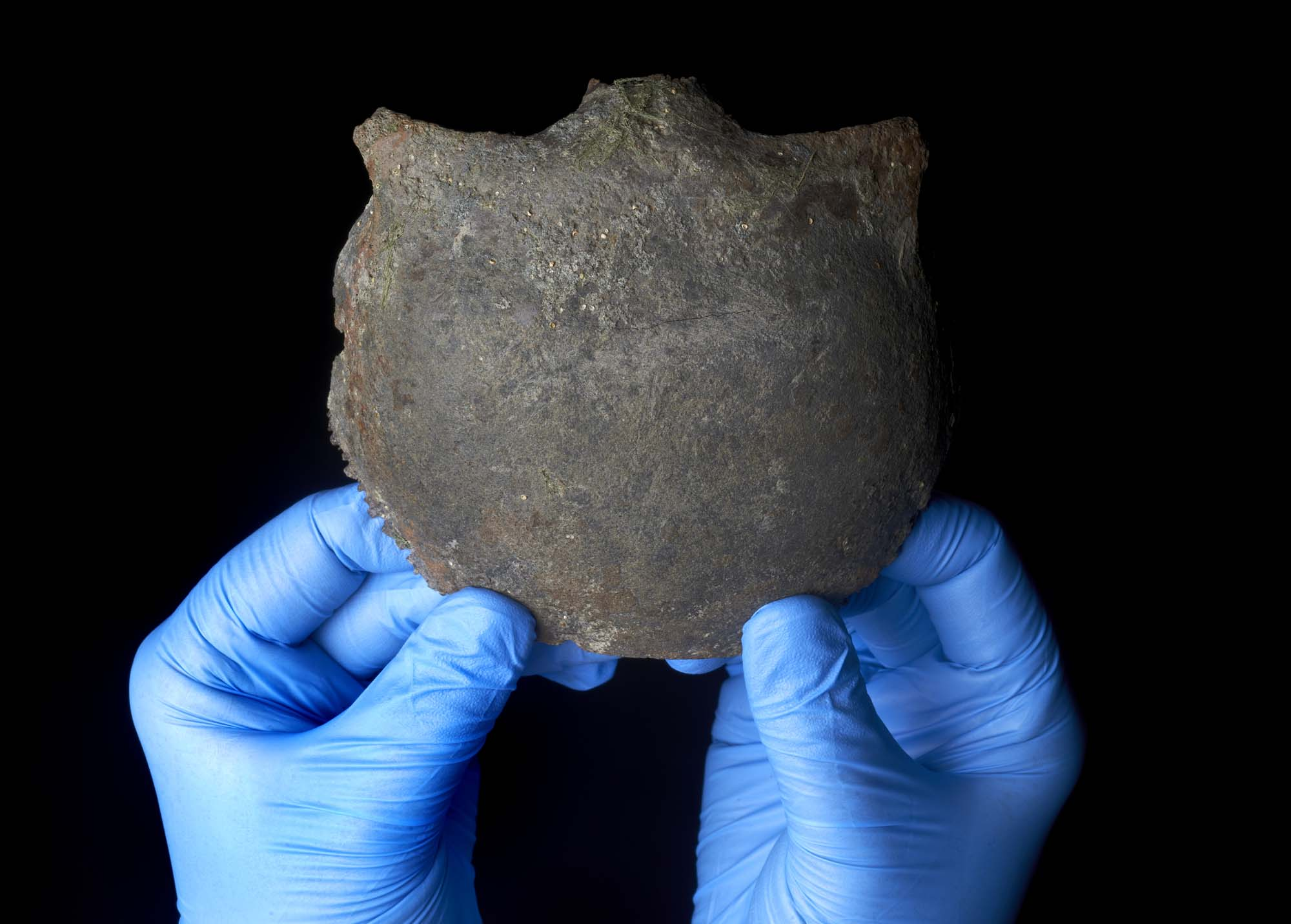 a photo of a skull fragment being held by a pair of blue rubber gloved hands