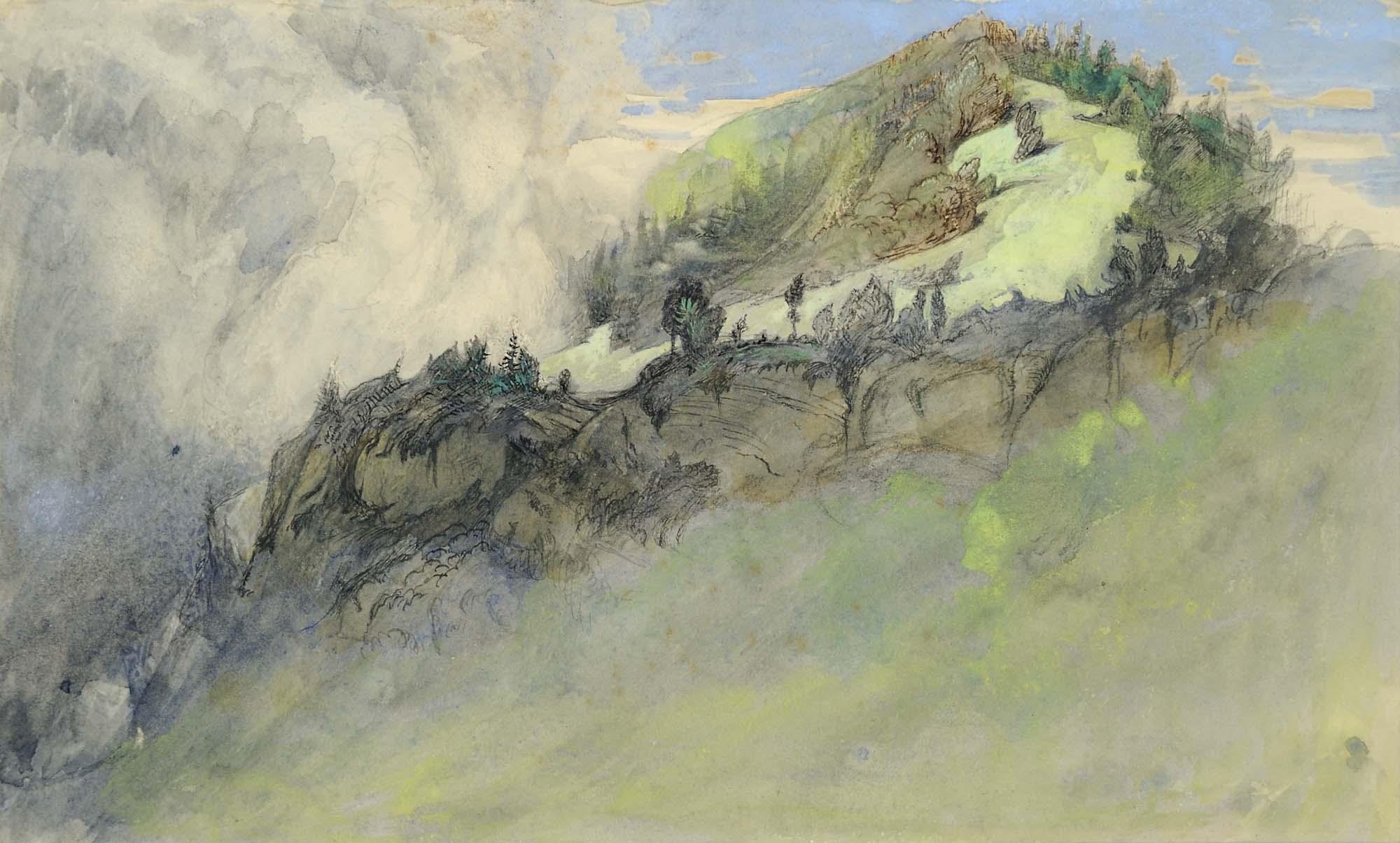 a watercolour of an Alpine meadow