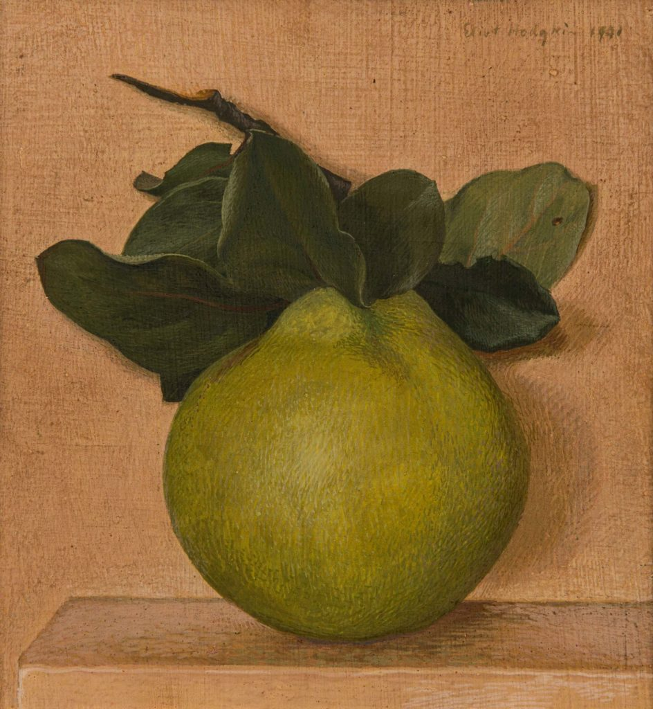 a still life of a green quince with leaf