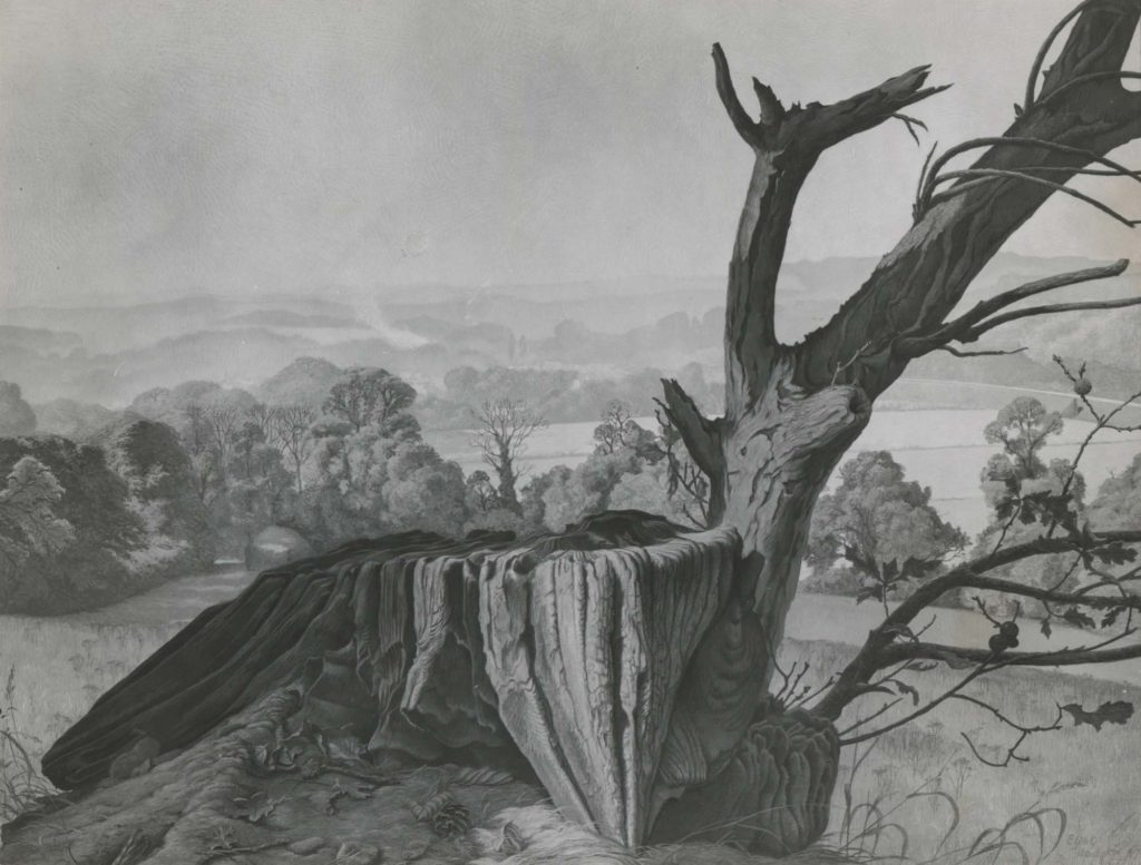 a black and white print of a painting of a tree stump