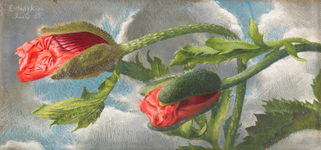 a painting of two poppies about to bud